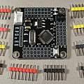 Arduino Pro Mini Strong, David Pilling